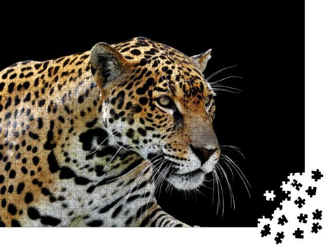 "Puzzle 1000 Teile ""Schöner Leopard: Porträt"""