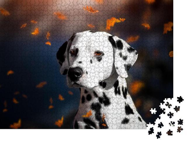 """Puzzle 1000 Teile """"Porträt eines Dalmatiners im Herbst"""""""