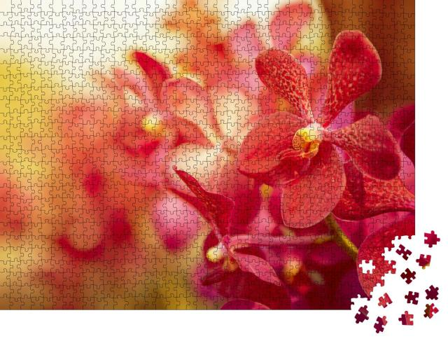 """Puzzle 1000 Teile """"Wunderschöne Orchidee im Abendlicht"""""""