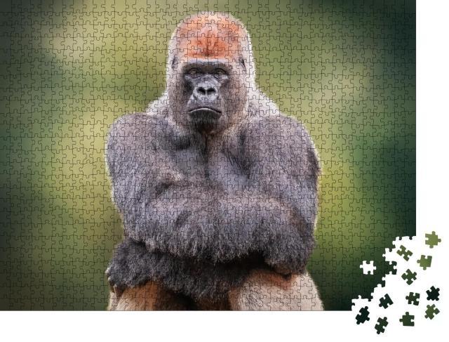 """Puzzle 1000 Teile """"Porträt eines Silberrücken-Gorillas, der seine Hände kreuzt"""""""