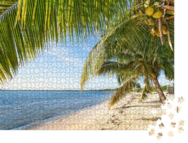 """Puzzle 1000 Teile """"Strandpalme und türkisfarbenes Meer am Playa Larga, Kuba"""""""