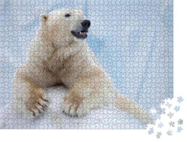 """Puzzle 1000 Teile """"Porträt eines großen weißen Bären auf Eis"""""""