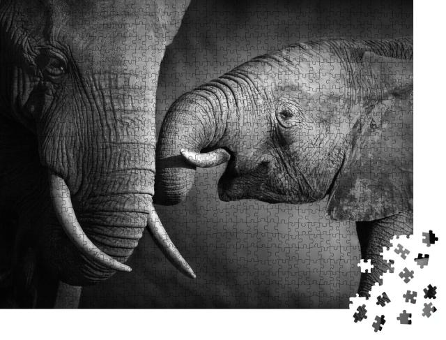 """Puzzle 1000 Teile """"Elefantenkalb mit seiner Mutter, schwarz-weiß"""""""