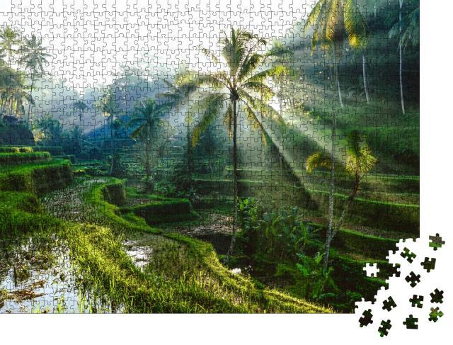 """Puzzle 1000 Teile """"Sonnenstrahlen über balinesischen Reisterrassen"""""""