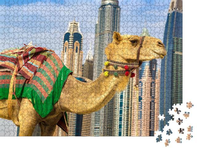 """Puzzle 1000 Teile """"Kamel vor der Dubai Marina, Vereinigte Arabische Emirate"""""""