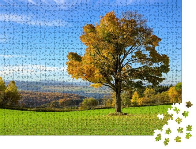 """Puzzle 1000 Teile """"Herbstlicher Baum im Erzgebirge, Deutschland"""""""