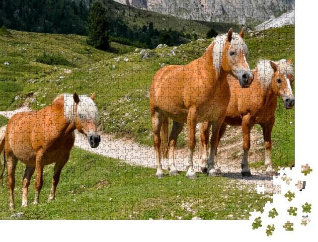 """Puzzle 1000 Teile """"Drei Haflingerpferde auf einer Alm in Südtirol, Italien"""""""