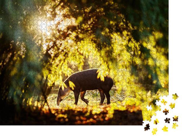 """Puzzle 1000 Teile """"Tapir in strahlendem Sonnenlicht im Wald eines Zoos"""""""
