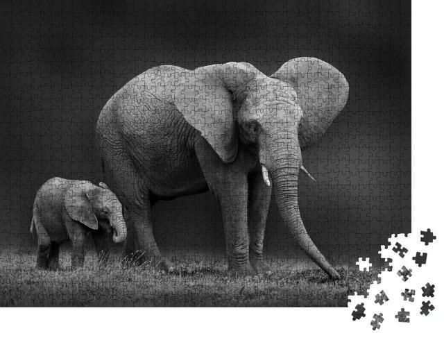 """Puzzle 1000 Teile """"Afrikanische Elefantenmutter und Sohn"""""""