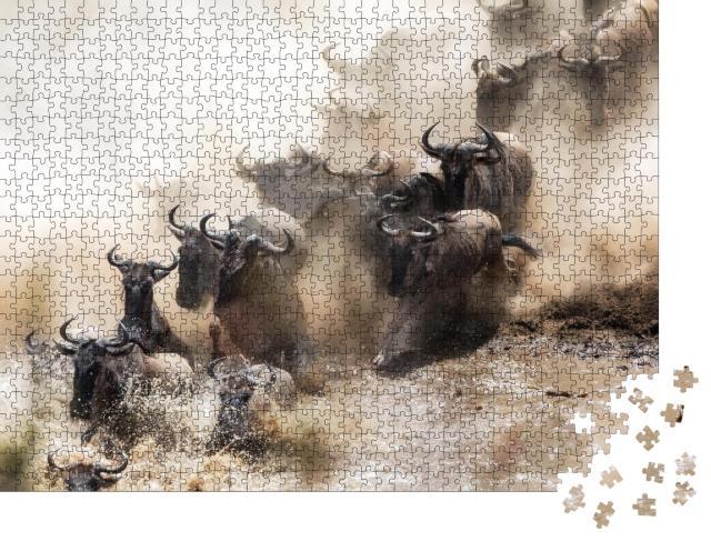 """Puzzle 1000 Teile """"Gnus beim Überqueren des Mara-Flusses in Kenia"""""""
