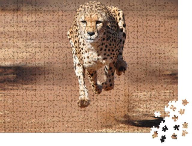 """Puzzle 1000 Teile """"Gepard beim Lauf, komplett in der Luft"""""""