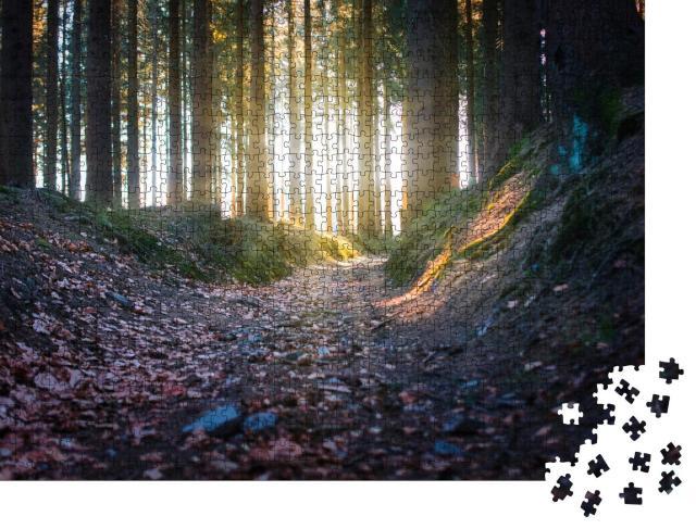 """Puzzle 1000 Teile """"Sonnenstrahlen im Wald, Rennsteig"""""""