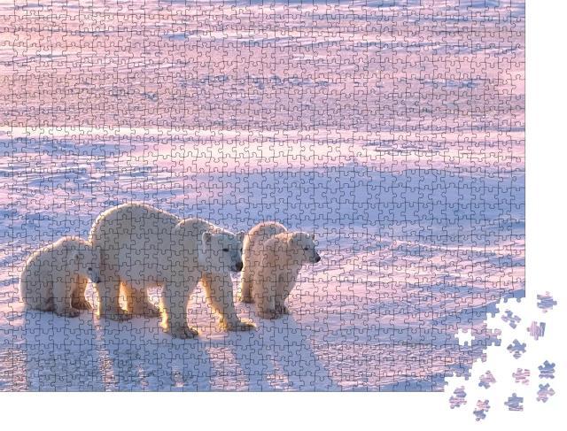 """Puzzle 1000 Teile """"Eisbär mit Jungtieren in der kanadischen Arktis"""""""
