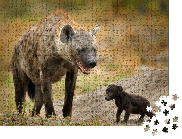 """Puzzle 1000 Teile """"Neugeborenes Hyänen-Junges mit seiner Mutter, Okavango, Botswana"""""""