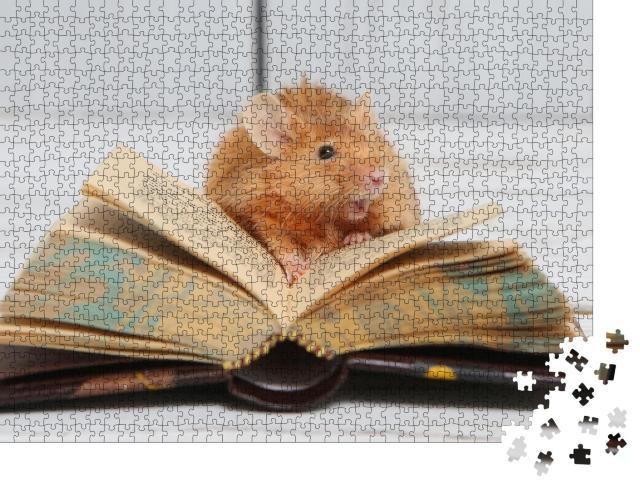 """Puzzle 1000 Teile """"Neugierige kleine Maus beim Lesen"""""""