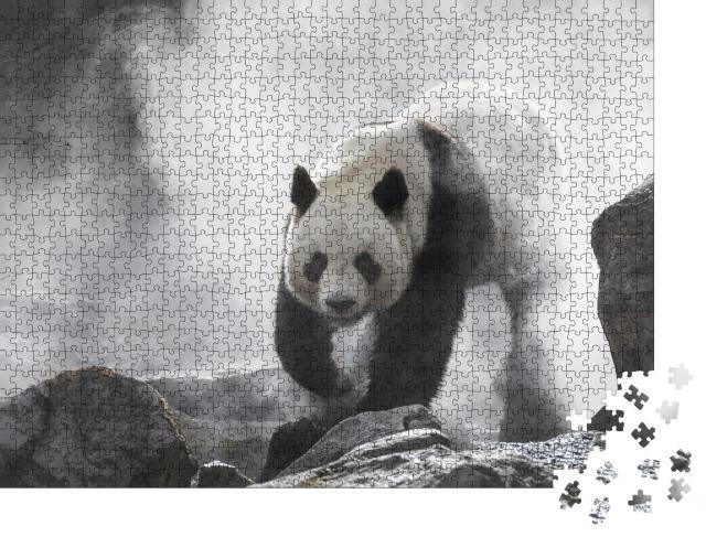 """Puzzle 1000 Teile """"Großer Panda im Nebel, schwarz-weiß"""""""