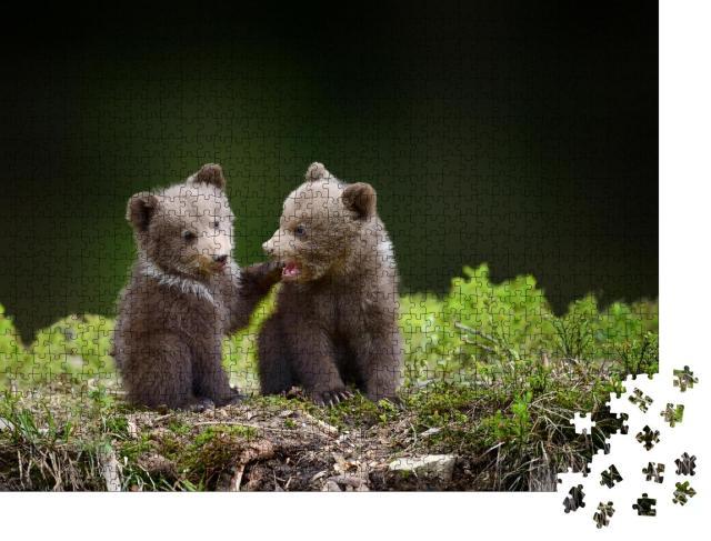 """Puzzle 1000 Teile """"Zwei kleine Bärenbabys im Wald"""""""