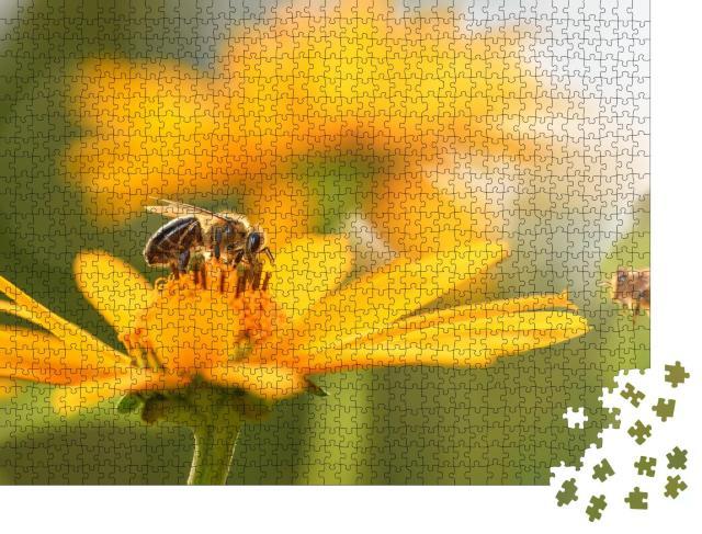 """Puzzle 1000 Teile """"Nahaufnahme: Biene und Blume"""""""