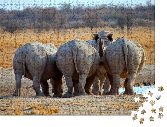 """Puzzle 1000 Teile """"Drei Breitmaulnashörner von hinten, Botswana Afrika"""""""