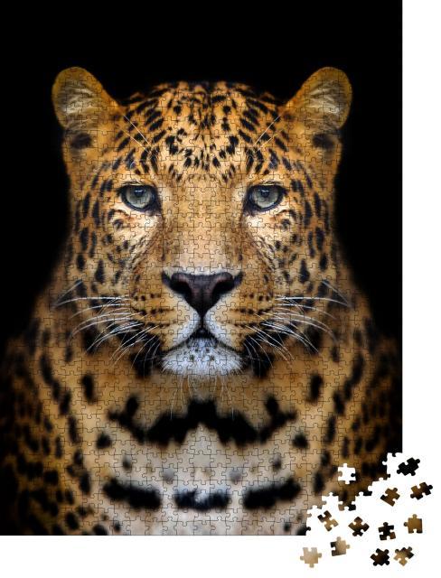 """Puzzle 1000 Teile """"Nahaufnahme Leopard: Porträt auf dunklem Hintergrund"""""""