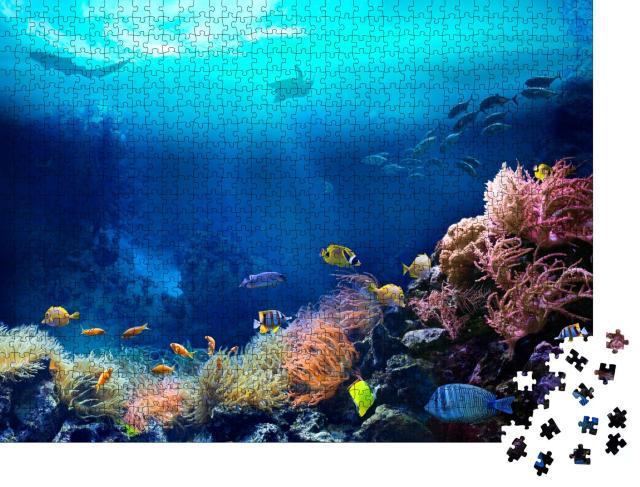 """Puzzle 1000 Teile """"Unterwasseransicht eines tropischen Korallenriffs"""""""