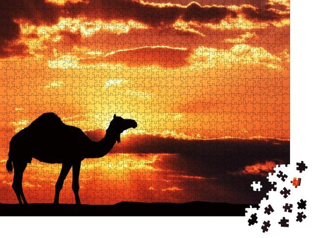 """Puzzle 1000 Teile """"Illustration: Silhouette eines Kamels in der afrikanischen Landschaft"""""""