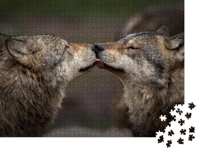 """Puzzle 1000 Teile """"Vertrauen unter Wölfen"""""""
