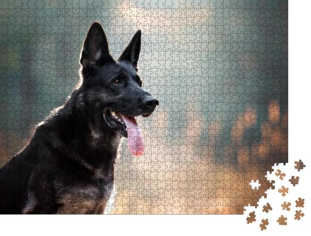 """Puzzle 1000 Teile """"Schwarzer großer Hund schaut aufmerksam, Zunge hängt aus dem Maul"""""""