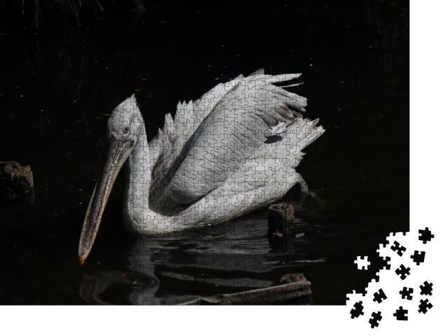 "Puzzle 1000 Teile ""Pelikan"""