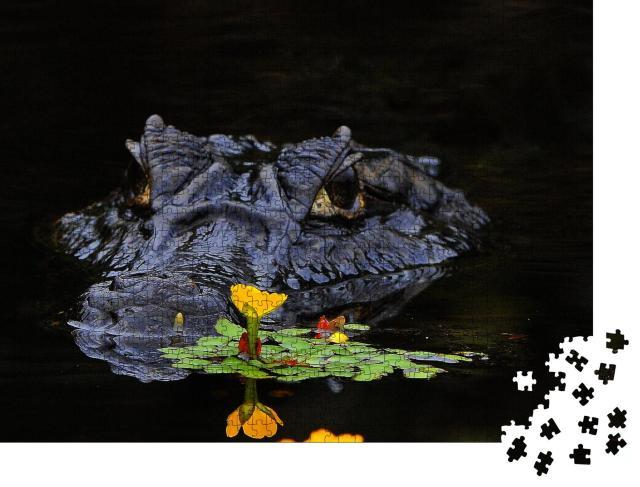 """Puzzle 1000 Teile """"Kaimane sind Krokodile"""""""
