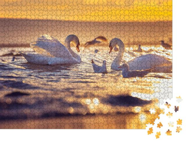"""Puzzle 1000 Teile """"Weiße Schwäne und Möwen im Sonnenaufgang über dem Meer"""""""