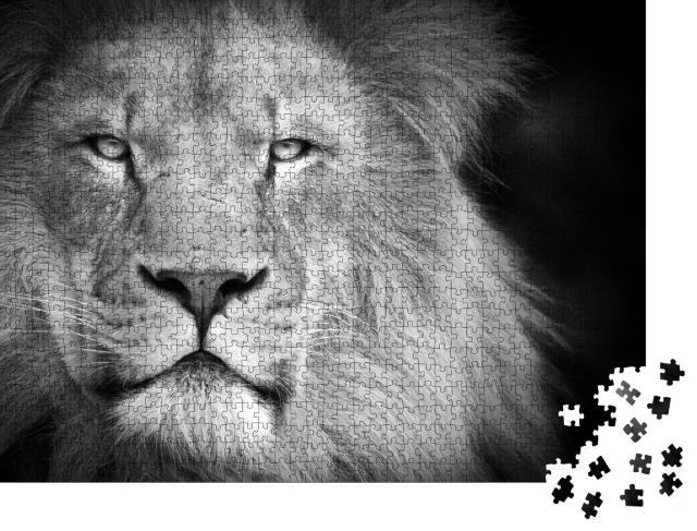 """Puzzle 1000 Teile """"Porträt eines Löwen, schwarz-weiß"""""""