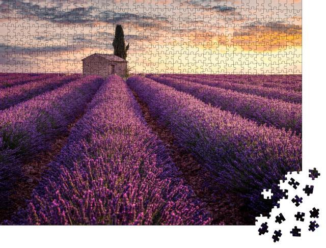 """Puzzle 1000 Teile """"Frankreich, Provence: Ein kleines Haus inmitten von Lavendelfeldern"""""""
