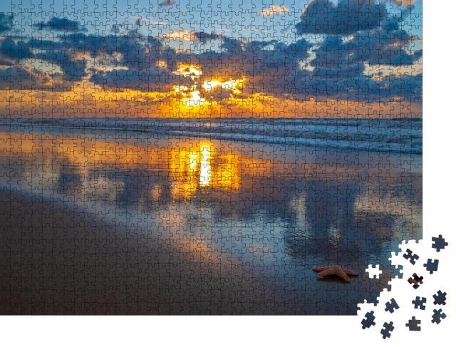 """Puzzle 1000 Teile """"Seeiglel im Sonnenuntergang, Oostende, Belgien."""""""