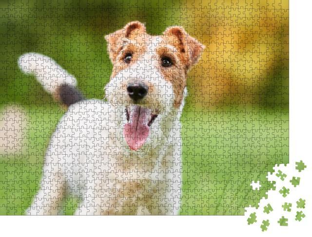 """Puzzle 1000 Teile """"Nahaufnahme eines glücklichen Foxterriers"""""""