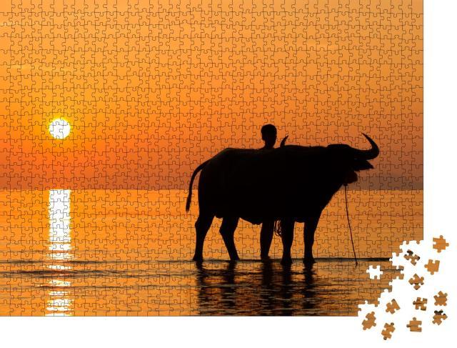 """Puzzle 1000 Teile """"Wasserbüffel Buffalo am Strand von Ko Samui, Thailand"""""""