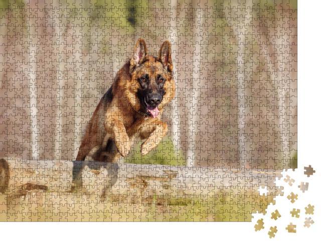 """Puzzle 1000 Teile """"Deutscher Schäferhund springt über einen Baumstamm"""""""