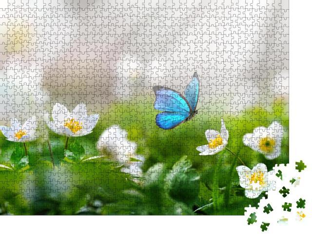 """Puzzle 1000 Teile """"Weiße Anemonen: perfekter Landeplatz für einen blauen Schmetterling"""""""