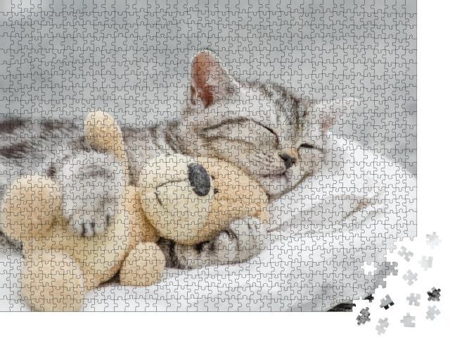 """Puzzle 1000 Teile """"Niedliches Kätzchen schmust mit einem Teddy"""""""