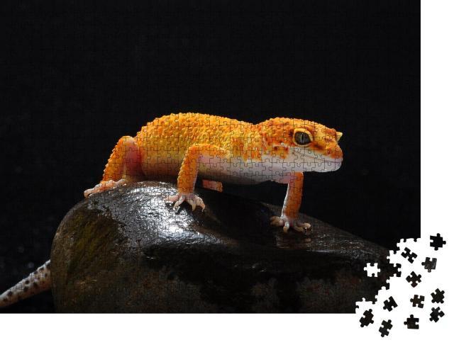 """Puzzle 1000 Teile """"Gecko, Eidechse, Leopard-Eidechsengecko"""""""