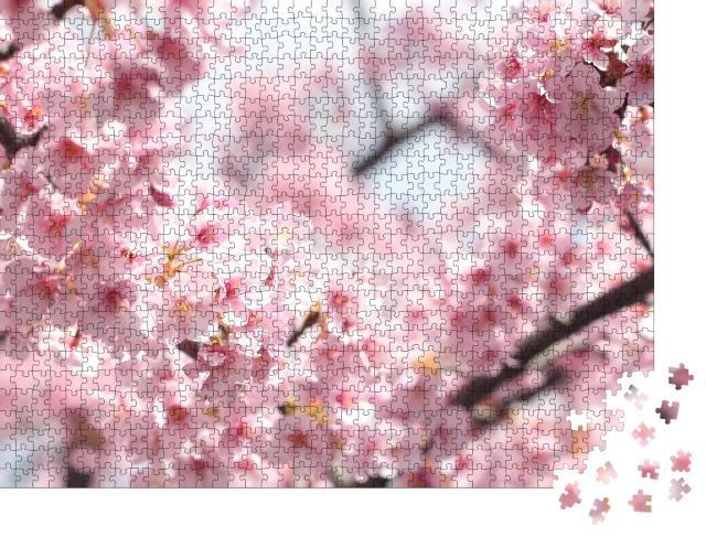 """Puzzle 1000 Teile """"Wunderschöne rosa Kirschblüten, Tokio, Japan"""""""