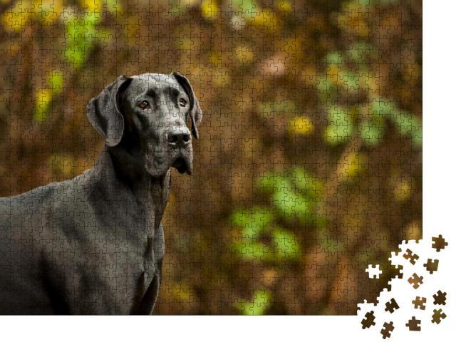 """Puzzle 1000 Teile """"Deutsche Dogge steht vor der Vegetation"""""""