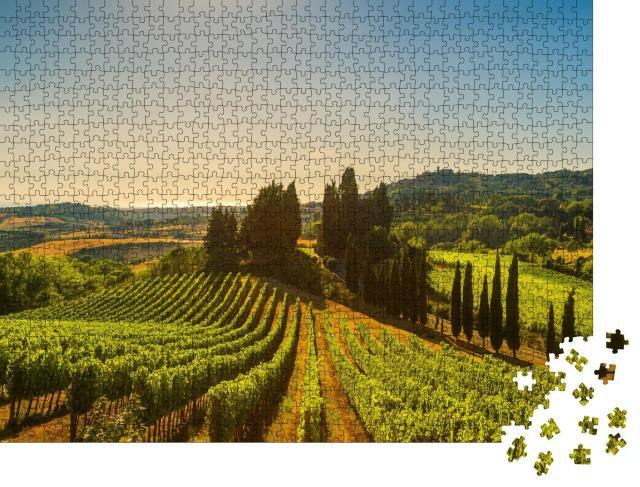 """Puzzle 1000 Teile """"Casale Marittimo, Dorf, Weinberge und Landschaft in der Maremma, Toskana, Italien"""""""
