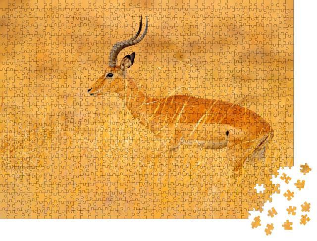 """Puzzle 1000 Teile """"Antilope inmitten der Gras-Savanne, Südafrika"""""""