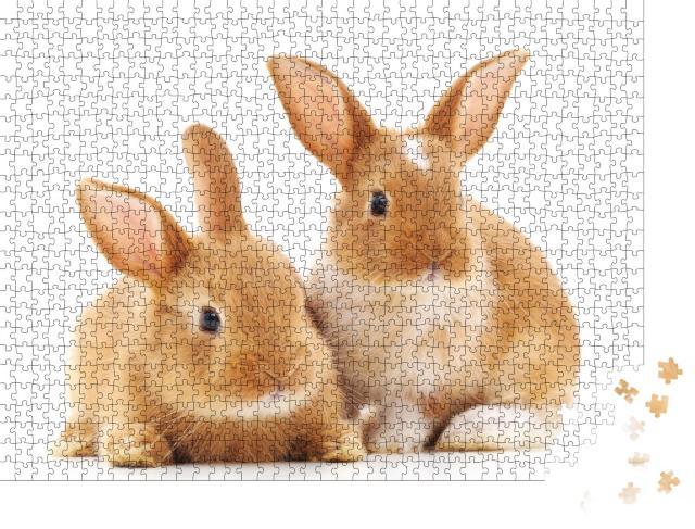 """Puzzle 1000 Teile """"Zwei kleine hellbraune Kaninchen"""""""