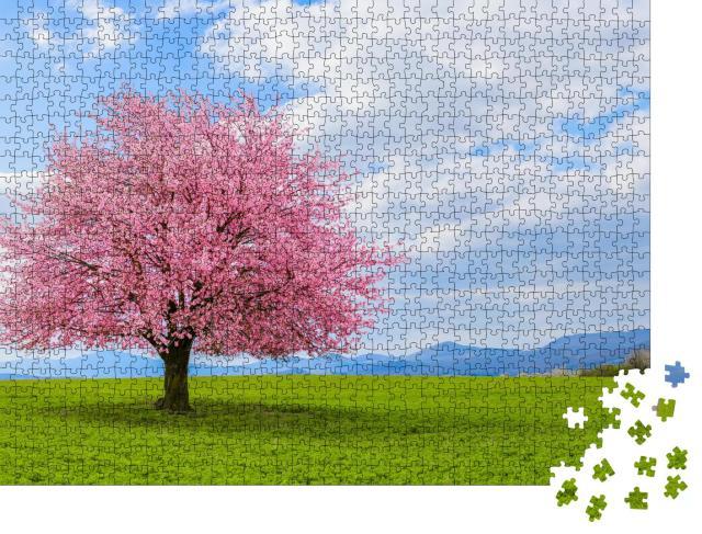 """Puzzle 1000 Teile """"Frühling in der Natur mit blühendem Baum"""""""