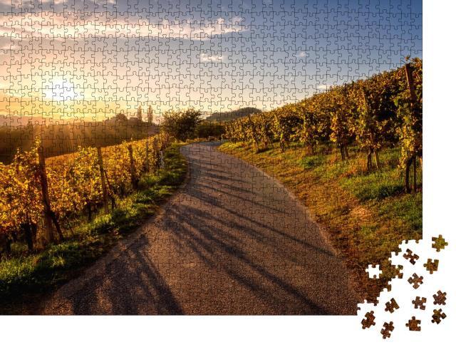 """Puzzle 1000 Teile """"Asphaltstraße durch Weinberge bei Sonnenuntergang, Weinregion Maribor, Slowenien"""""""