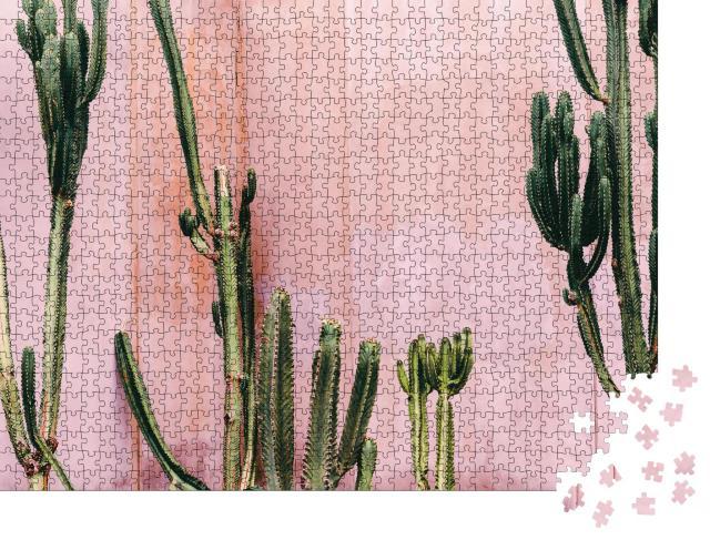 """Puzzle 1000 Teile """"Kakteen vor einer rosa Wand"""""""