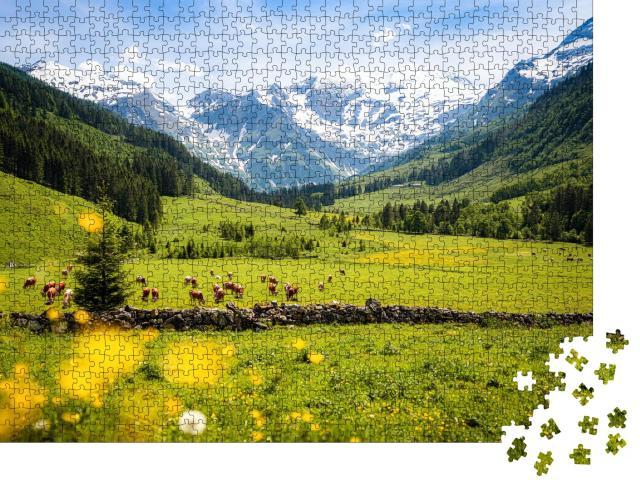 """Puzzle 1000 Teile """"Panoramablick auf ländliche alpine Landschaft mit Kühen, Nationalpark Hohe Tauern"""""""