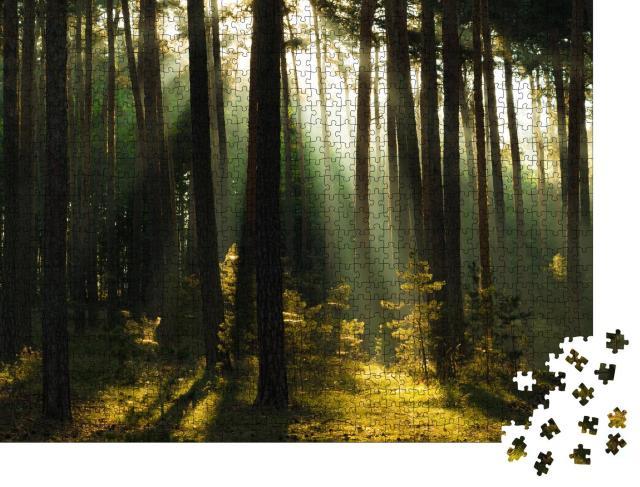 """Puzzle 1000 Teile """"Sonnenstrahlen im Wald, Harz, Deutschland"""""""